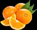 #1 Oatmeal Vanilla Orange